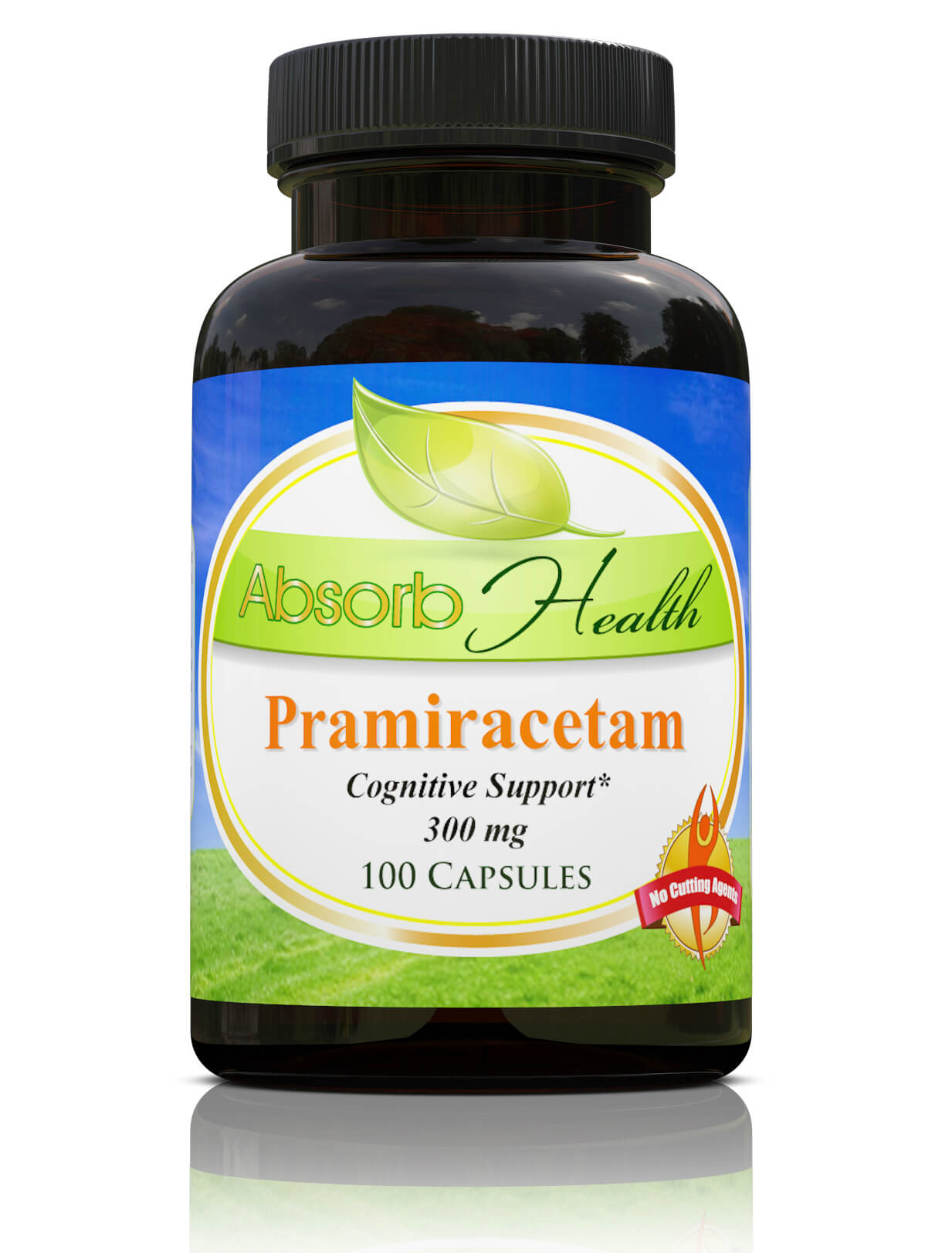 Pramiracetam - 100 Capsules