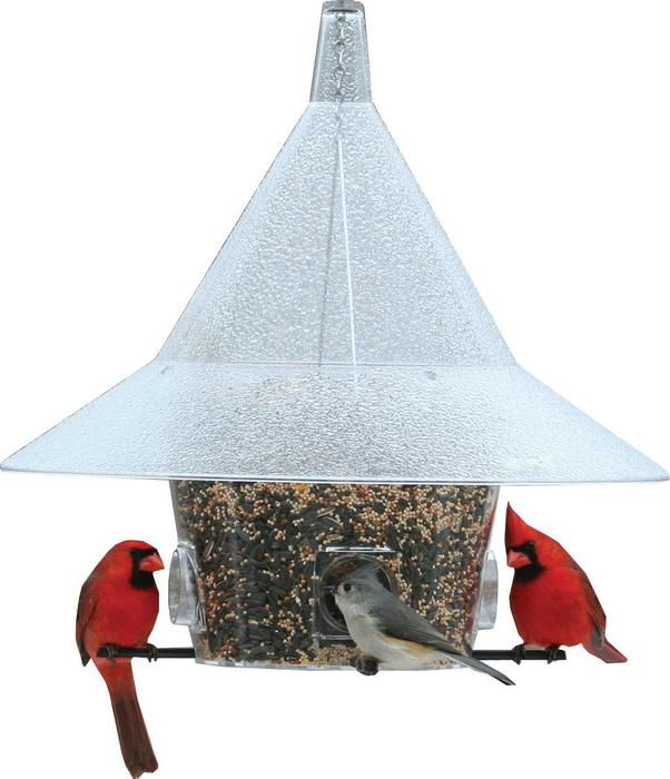 150 Mandarin  Wild Bird Feeder