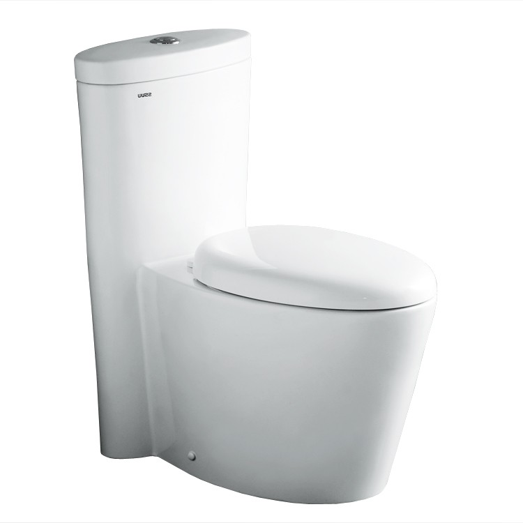 "Dual Flush Toilet - Ariel Contemporary One Piece ""Monterey"" (White)"