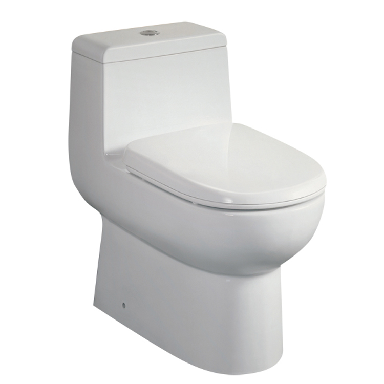 "Dual Flush Toilet - Ariel Platinum Contemporary European ""Camilla"""