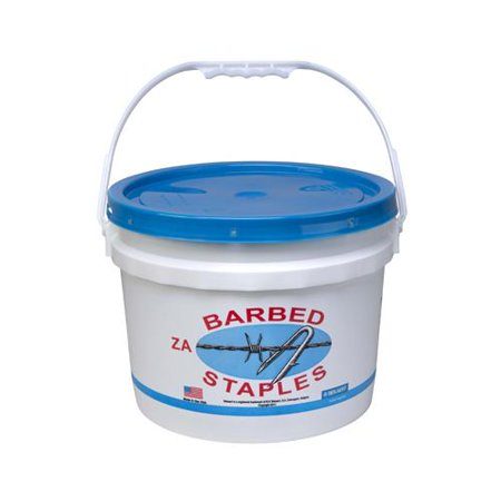 STAPLE BBD FENCE 8G 50LB 2IN