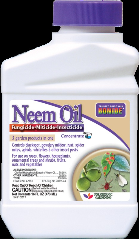 024 PT NEEM OIL CONCENTRATE