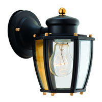 Boston Harbor HV-66961-BK Lantern Porch Light Fixture, Medium, 60 W, 1 Lamp