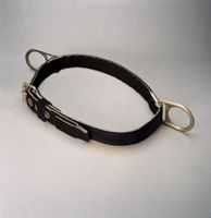 Miller+ Large Body Belt With 2 Hip D-Rings & Tongue Buckle