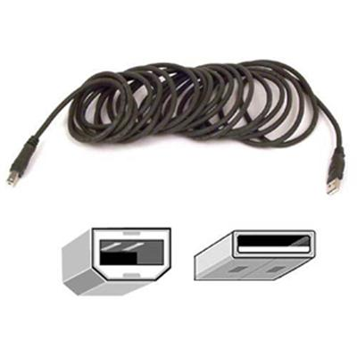 10' USB Device Cable