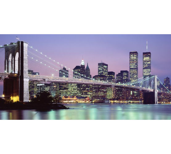 Biggies Wall Mural - New York Skyline - Large