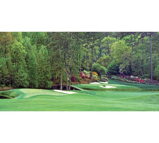 Biggies Augusta Photograph Golf Mural, Medium