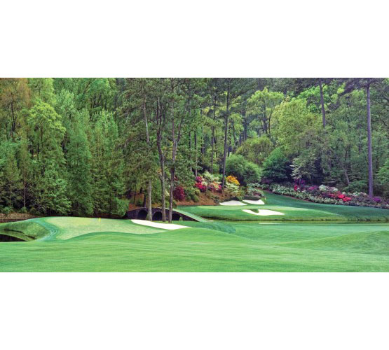 Biggies Golf Murals - Augusta- Large