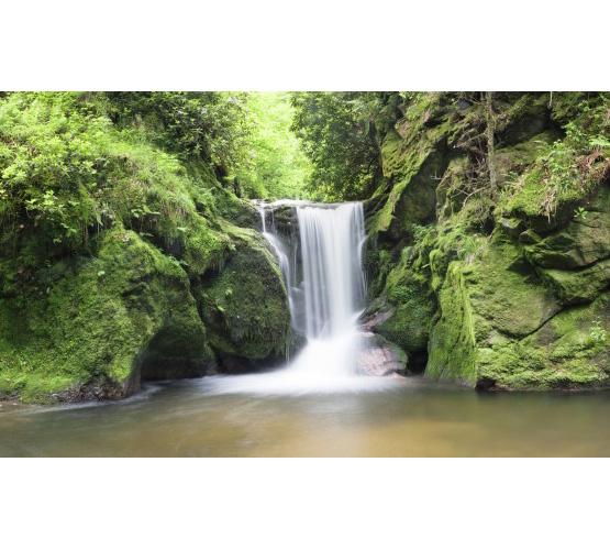 "Biggies 80"" Waterfall Two Window Well Scenes"