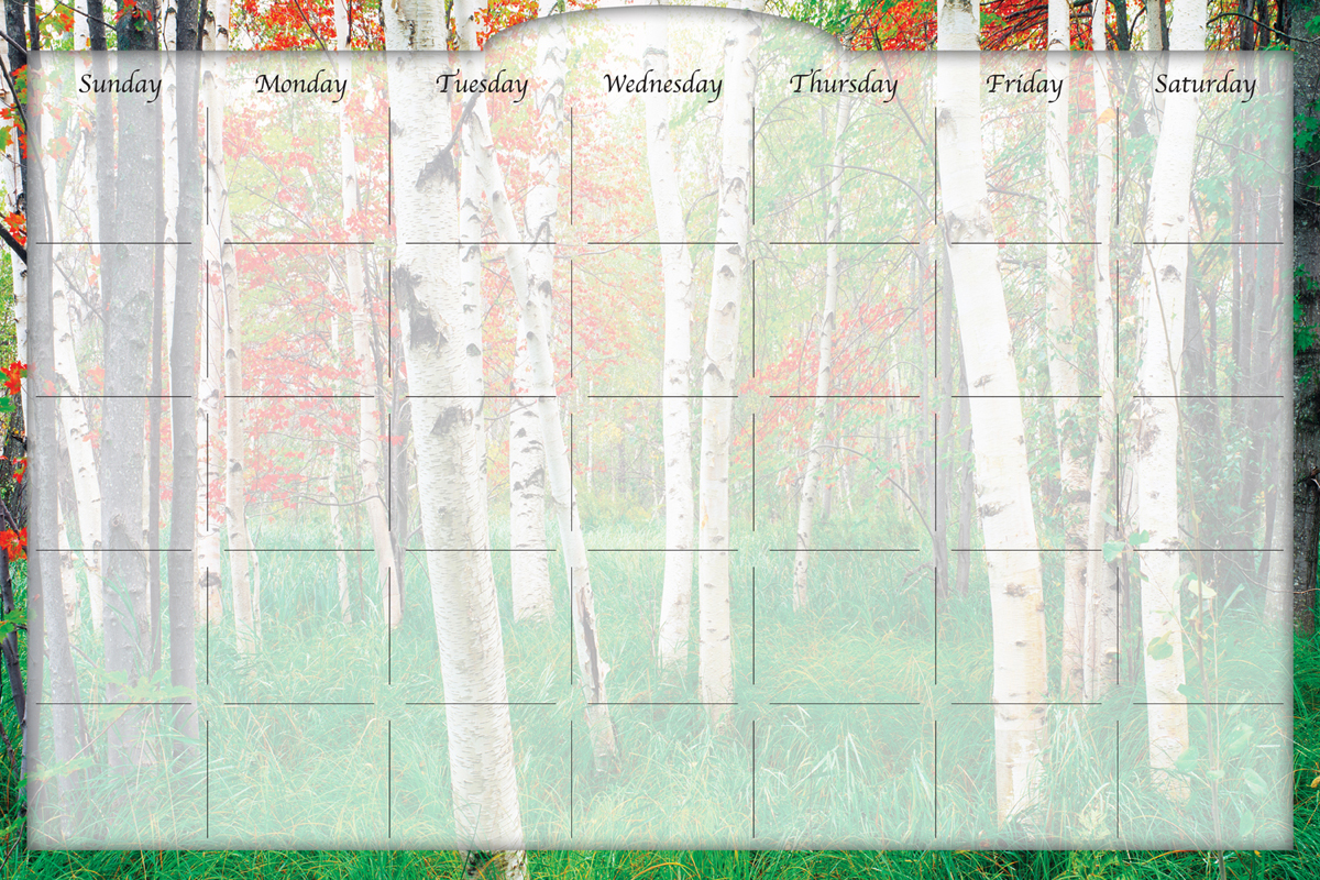 Biggies - Dry Erase Stickie Monthly Calendar-Aspen Grove