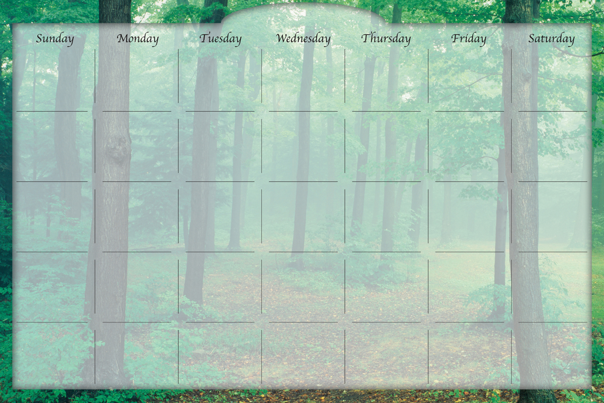 Biggies - Dry Erase Stickie Monthly Calendar-Forest Mist