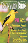 An Identif. Guide to Common Backyard Birds