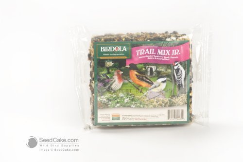 Trail Mix Junior Seed Cake
