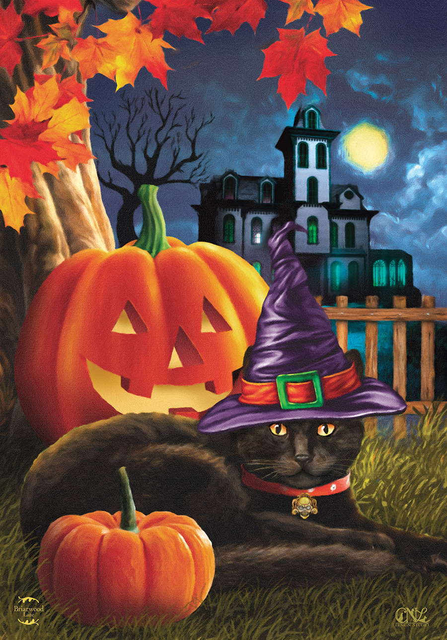 Black Cat Halloween House Flag