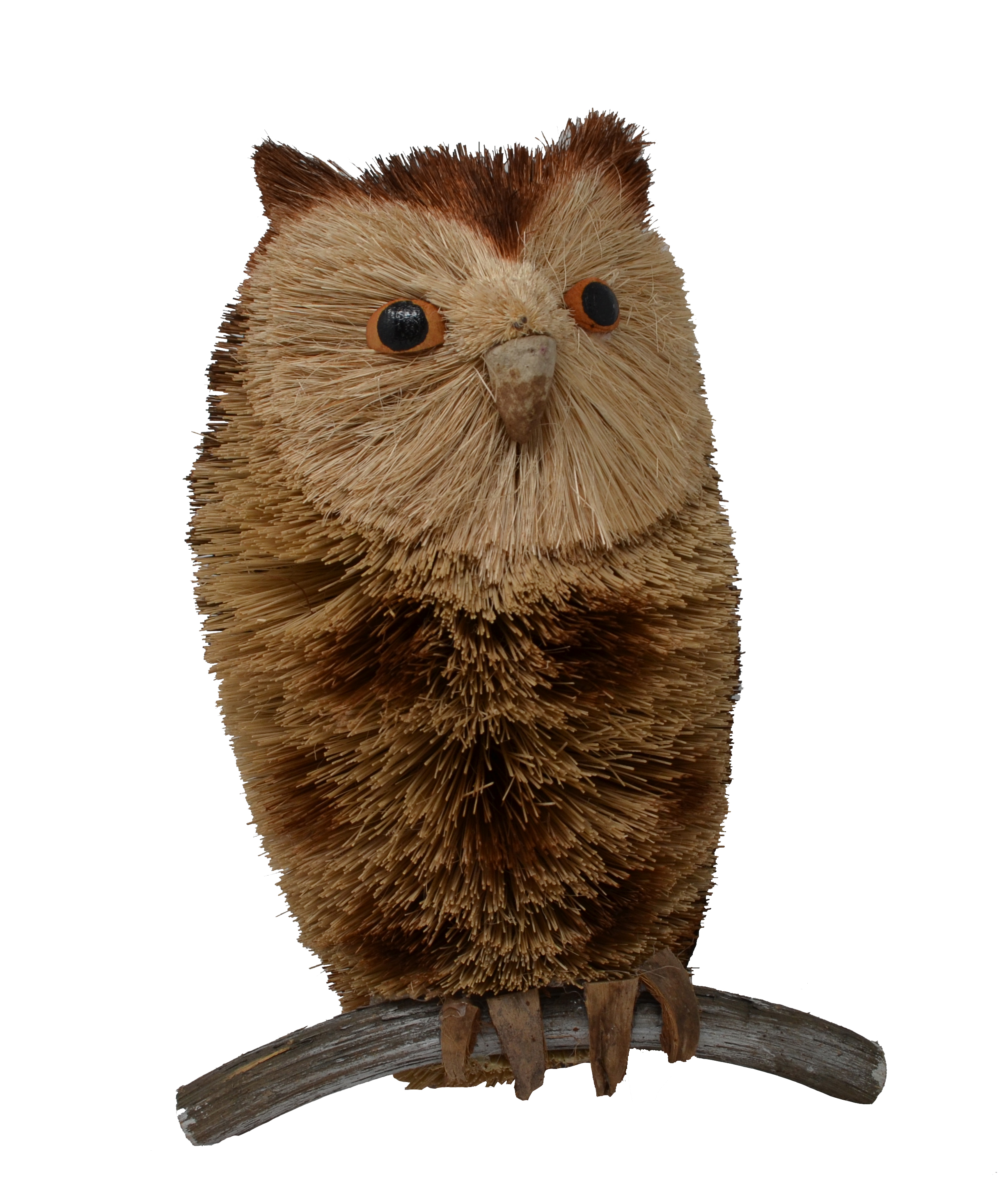 10 inch Owl Spotted
