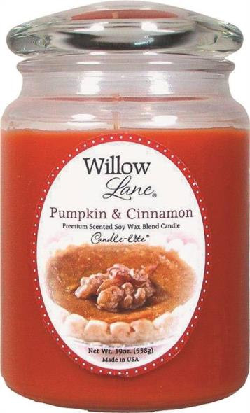 19OZ JAR CANDLE PUMPKIN CINN