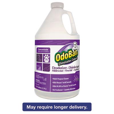 Professional Series Deodorizer Disinfectant, 1gal Bottle, Lavender Scent