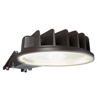 AREA LIGHT 50W 5000K 120V BZ