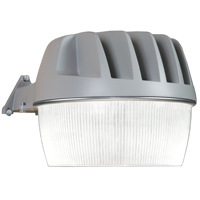 Cooper Lighting ALL-PRO AL3050LPC Heavy Duty Area and Wall Light With Photo Control, 120 V, LED