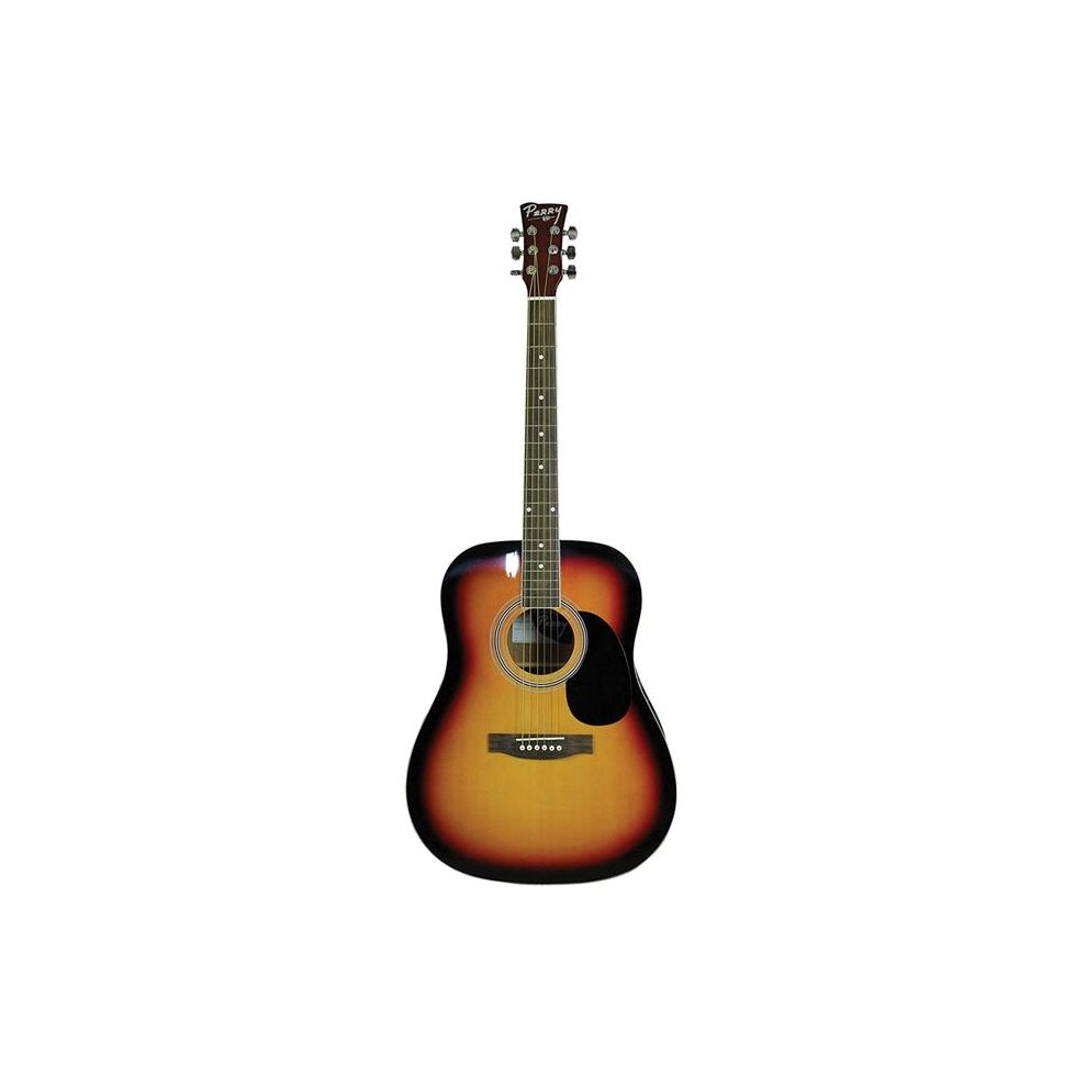 Perry Adult Dreadnought Acoustical Combo