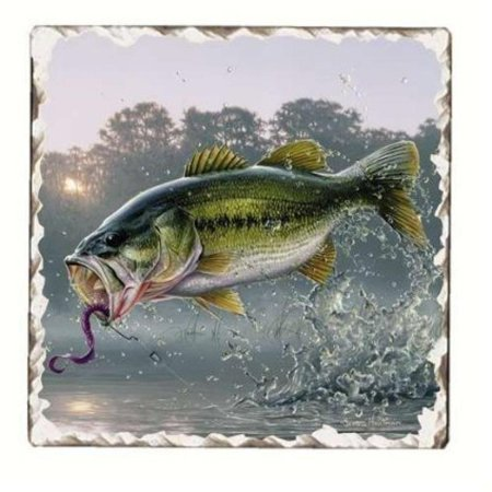 Bass Fish Single Tumbled Tile Coaster