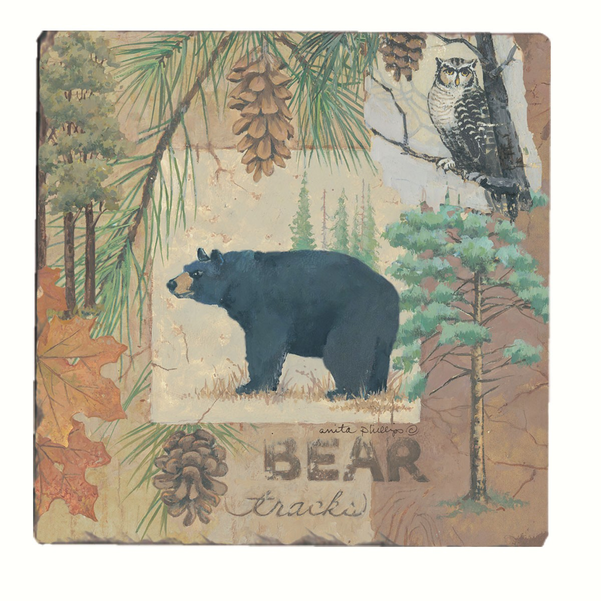 Bear Tracks Tumbled Tile Coasters Set of 4