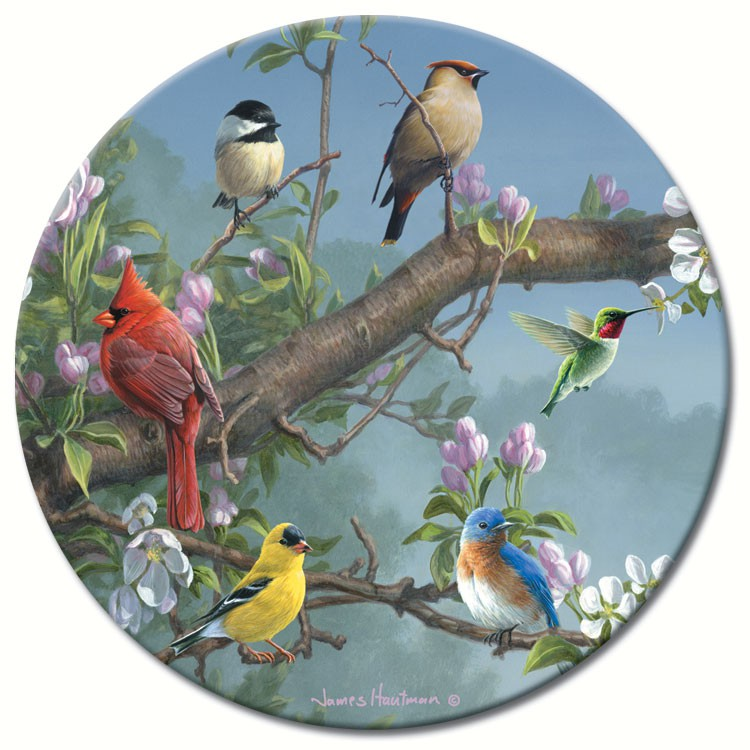 Beautiful Songbirds Lazy Susan 13""