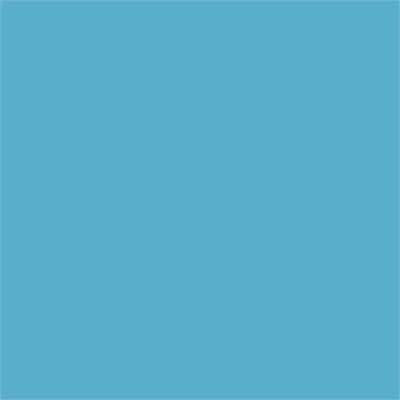 Cricut Prem Vinyl 12x48 Turq