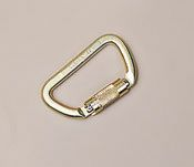 "DBI/SALA+ 3/4"" Saflok+ Self-Closing/Locking Steel Carabiner"