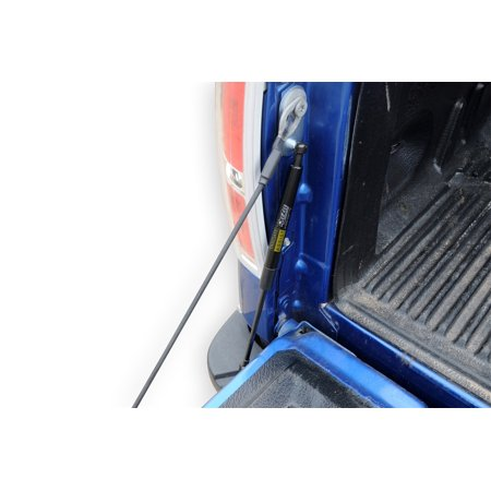 +TAILGATE ASSIST FORD F150 04-