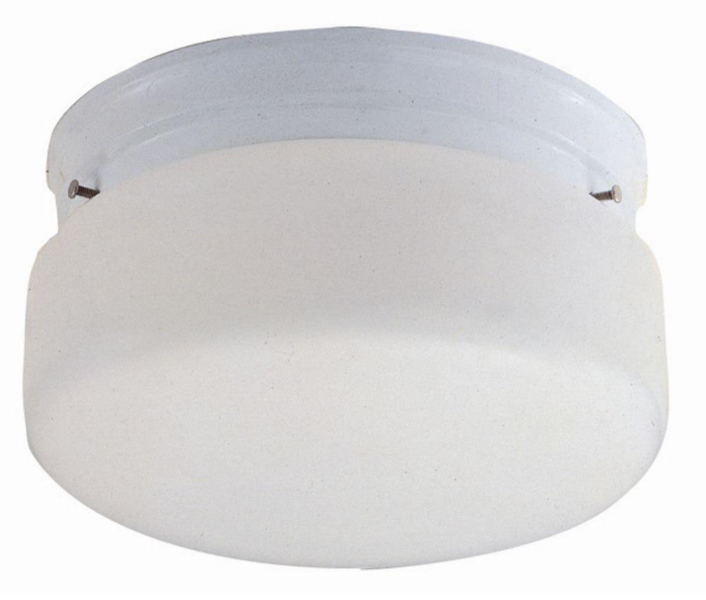 2-Light Ceiling Mount, White