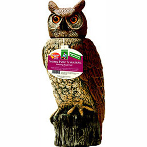 Solar Activate 18 inch Owl