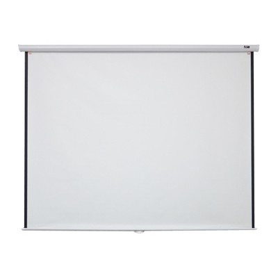 "100"" Manual B Series Projection Screen (16:9 format; 49"" x 87"")"