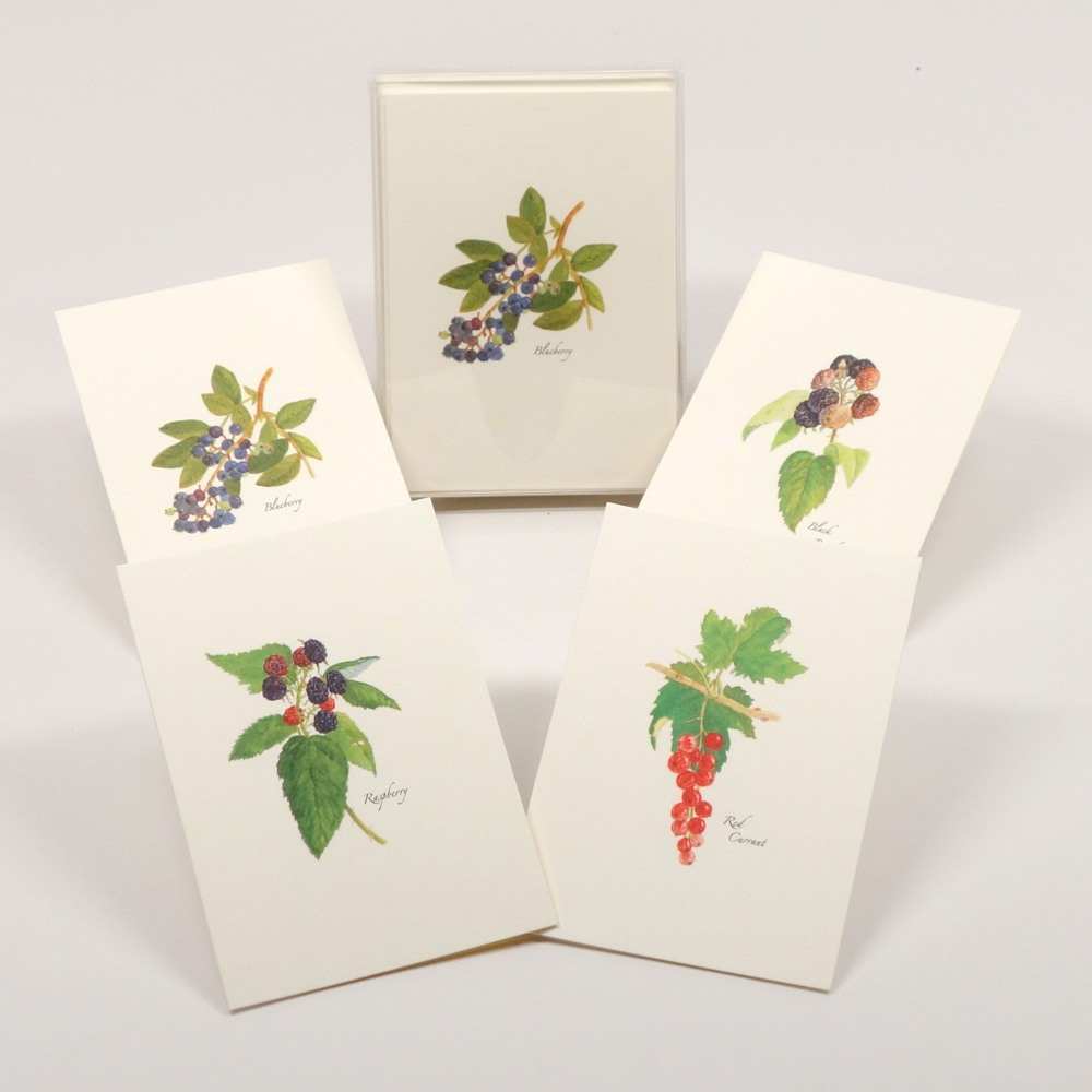Berry Assortment (2 each of 4 styles) Notecards