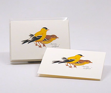 American Goldfinch Notecard Assortment (8 each of 1 style)