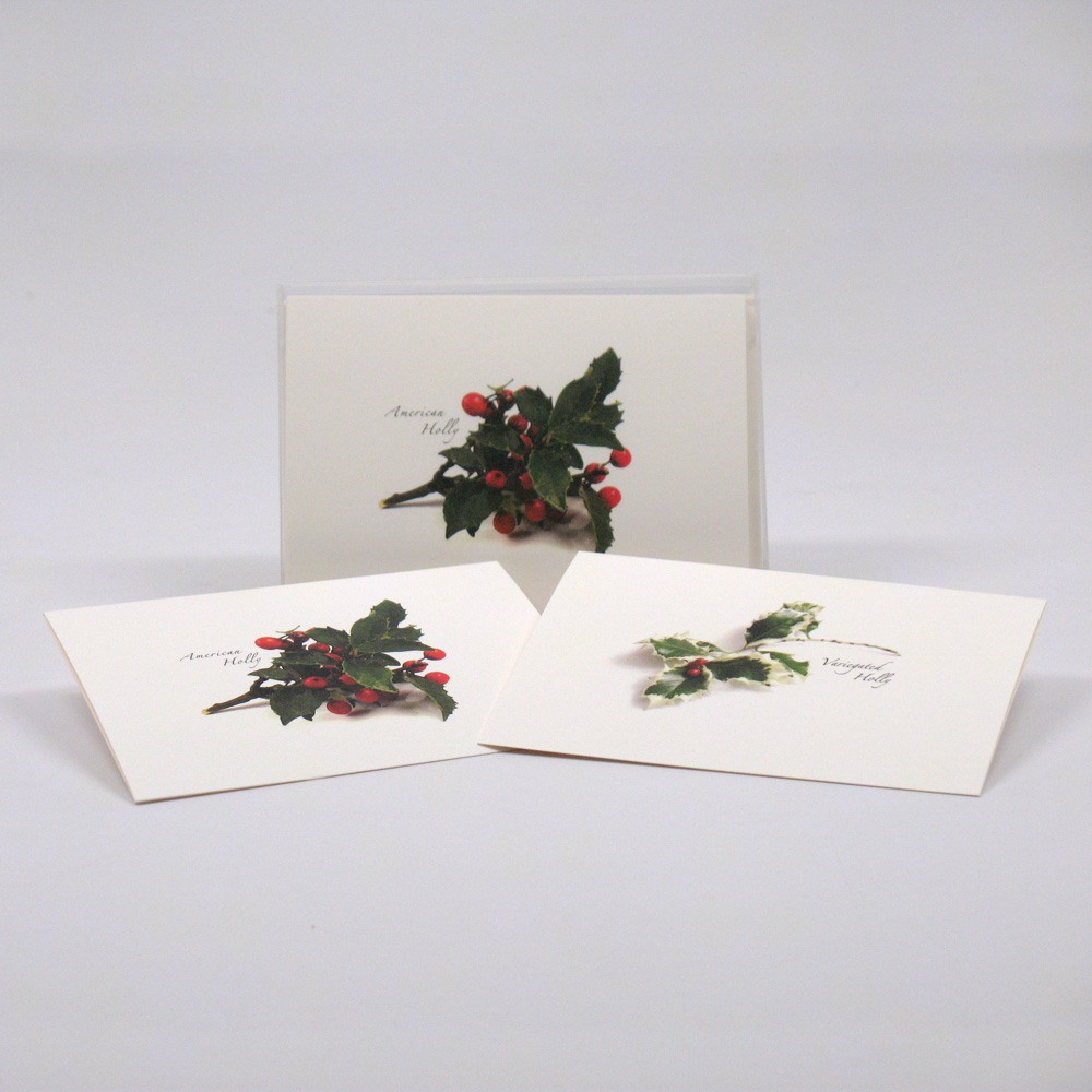 American Holly Assortment. (seasonal) Notecards