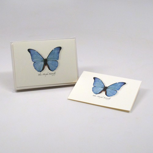 Blue Morpho Butterfly Notecards