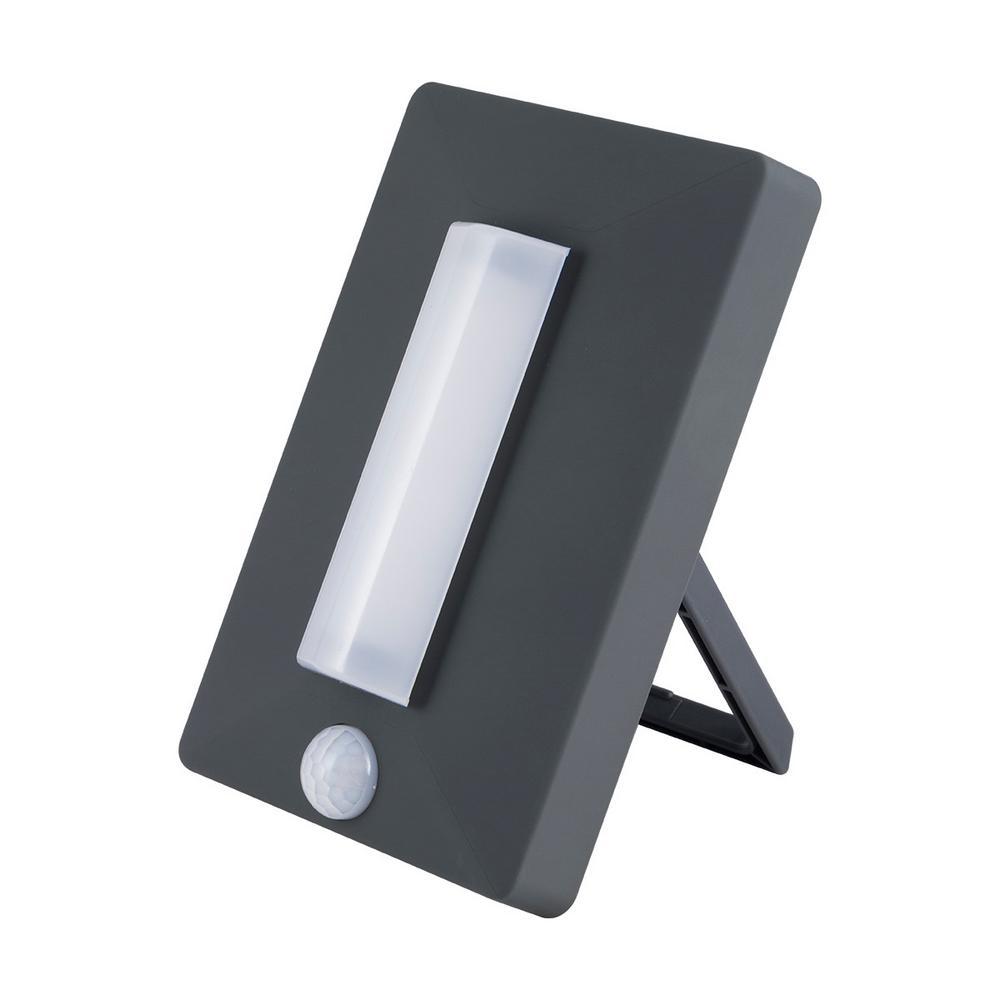 EcoSurvivor LED Battery Operated Motion