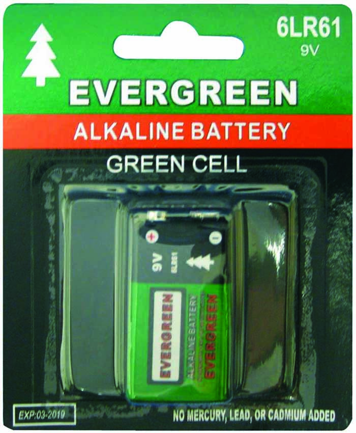 9 VOLT ALKALINE BATTERY 1 PC/CARDED