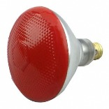 100PAR/R/1 RED OUTDOOR LIGHT