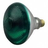 100PAR/G/1 GREEN OUTDOOR LIGHT