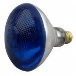 100PAR/B/1 BLUE OUTDOOR LIGHT