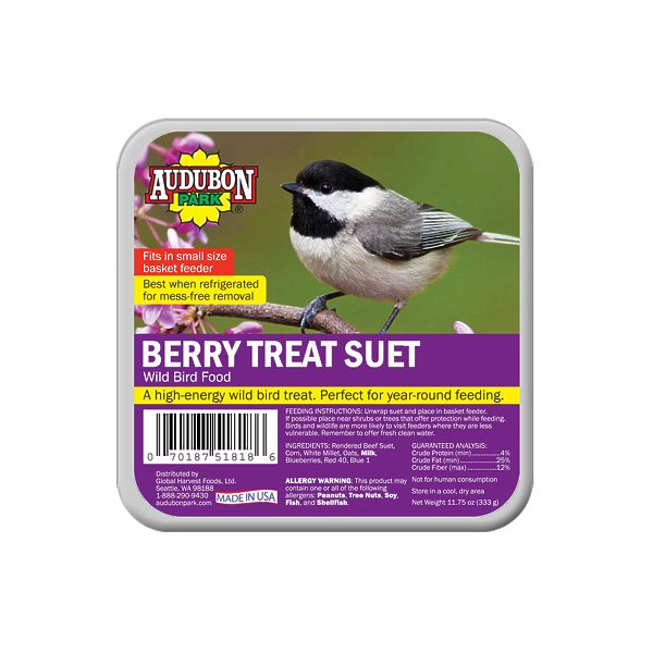 FOOD BD SUET BERRY TRT 11.75OZ
