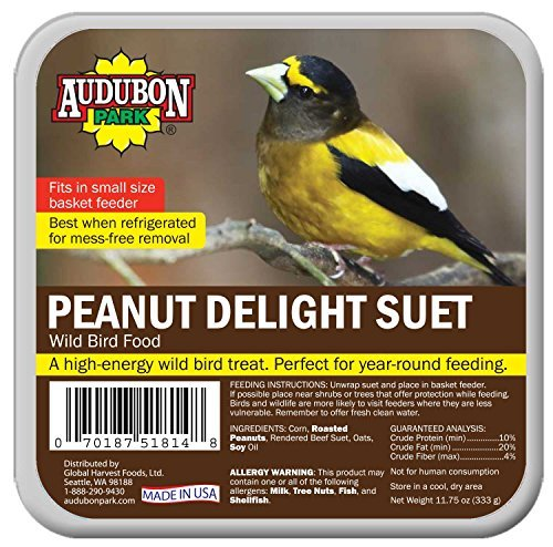 FOOD BD SUET PNUT-DLGT 12OZ
