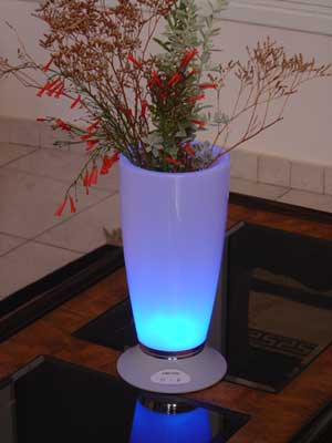 RECHARGEABLE ATMOSPHERE VASE W/ CHARGER