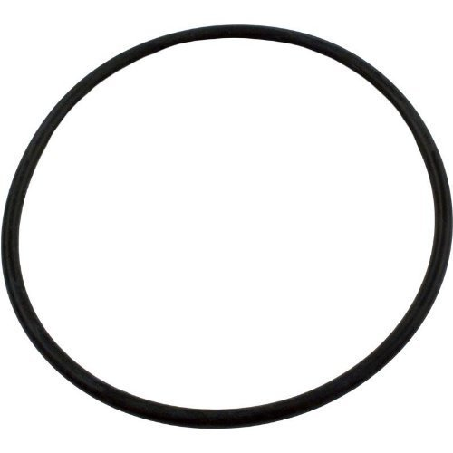 Aquatic Systems 52000500 Clamp O-Ring Replacement