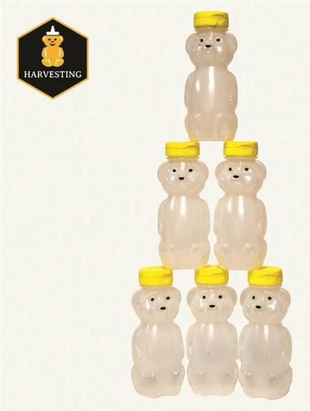 JAR HONEY BEAR 8OZ EMPTY 6PACK