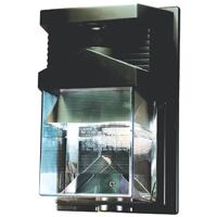 Dual Brite HZ-5630-BZ Security Light, 120 VAC, Halogen, Double Ended, 100 W