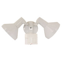 180 Degree Motion Activated 2-Light Security Light, White
