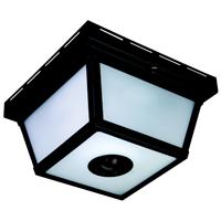 Heath Zenith HZ-4305-BK Motion Activated Decorative Light, 120 VAC, 25 W, 60 Hz, 30 ft, 360 deg, Black, Black